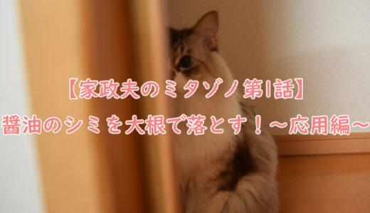 【家政夫のミタゾノ第1話 醤油のシミを大根で落とす!】家事代行で使える家事テク!